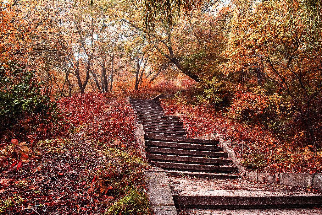 Осенняя пора - Павел