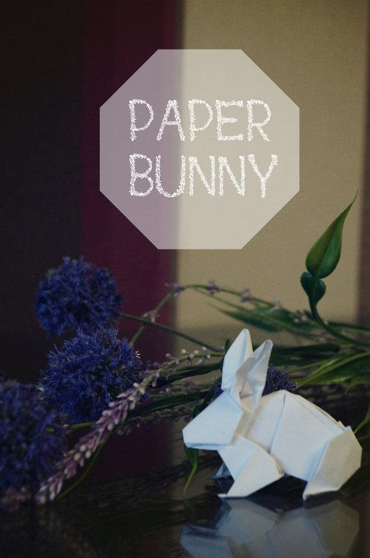 бумажный кролик - Софья Лейкина