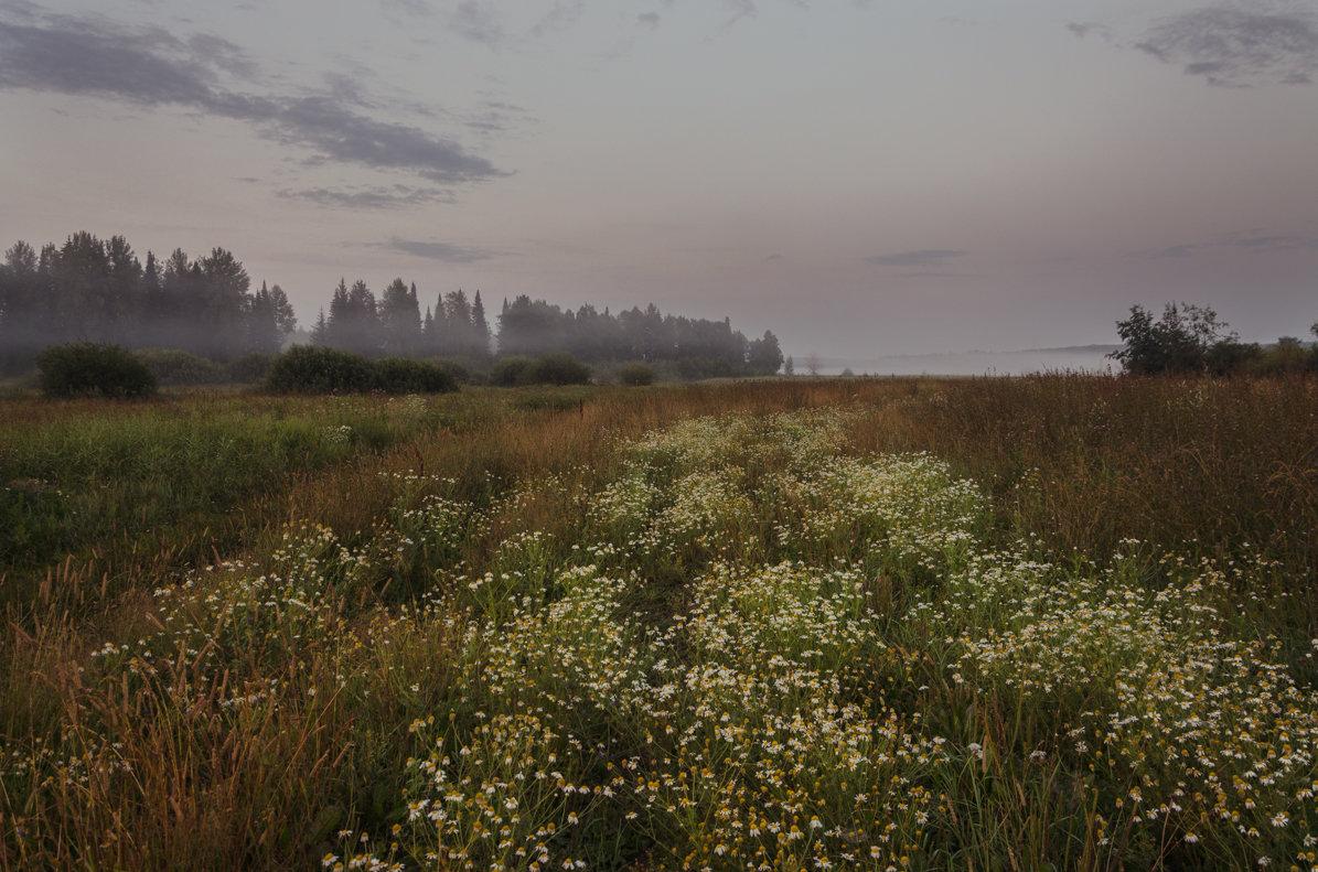 В ожидании солнца - Валентин Котляров