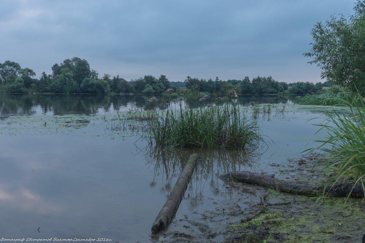 На реке Дубне. - Виктор Евстратов