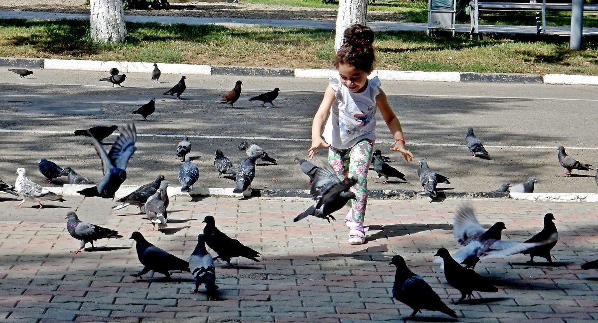 Девочка и голуби - Владимир