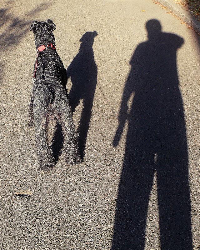 Утренняя прогулка с другом - Асылбек Айманов