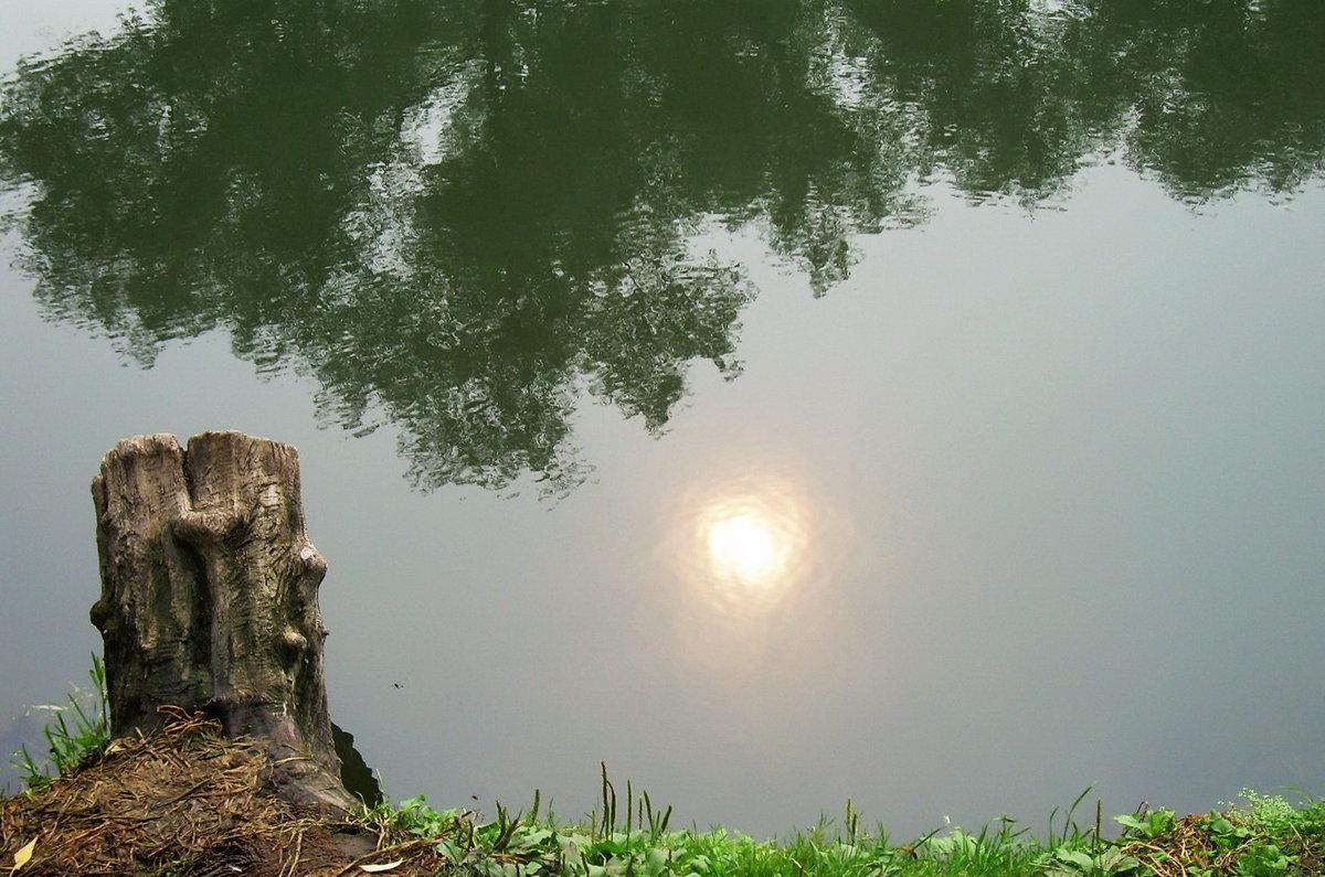 Отражение солнца в воде. Подмосковье - татьяна
