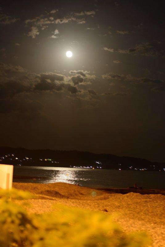 Лунная дорожка - Виктория Доманская