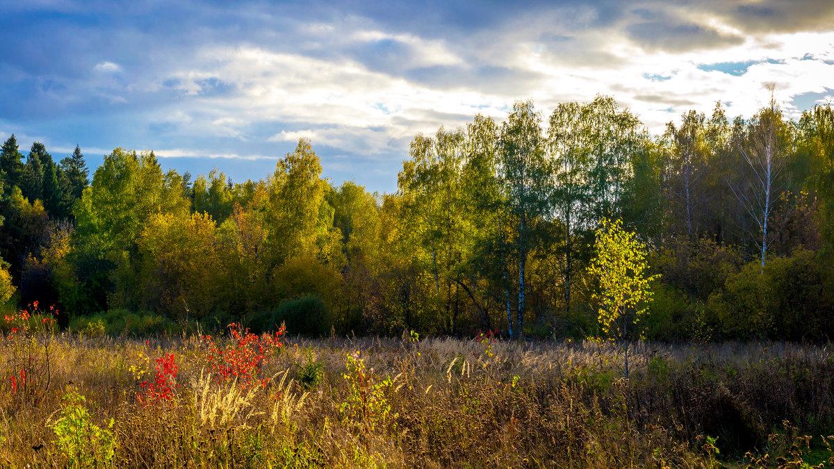Теплая осень. - Владимир Лазарев