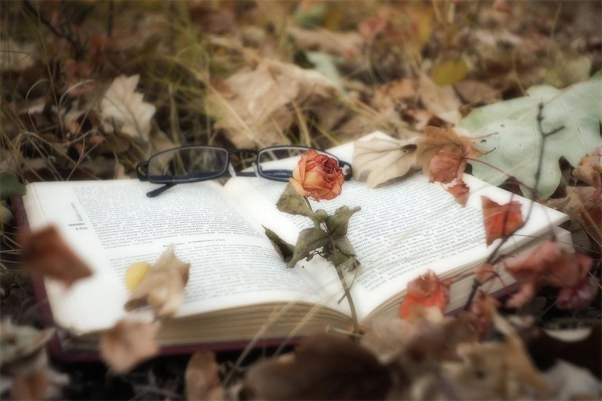 ПРИБЛИЖАЕТСЯ ВРЕМЯ ОСЕННИХ ФОТОСЕТОВ - АЛЕКСЕЙ ФОТО МАСТЕРСКАЯ