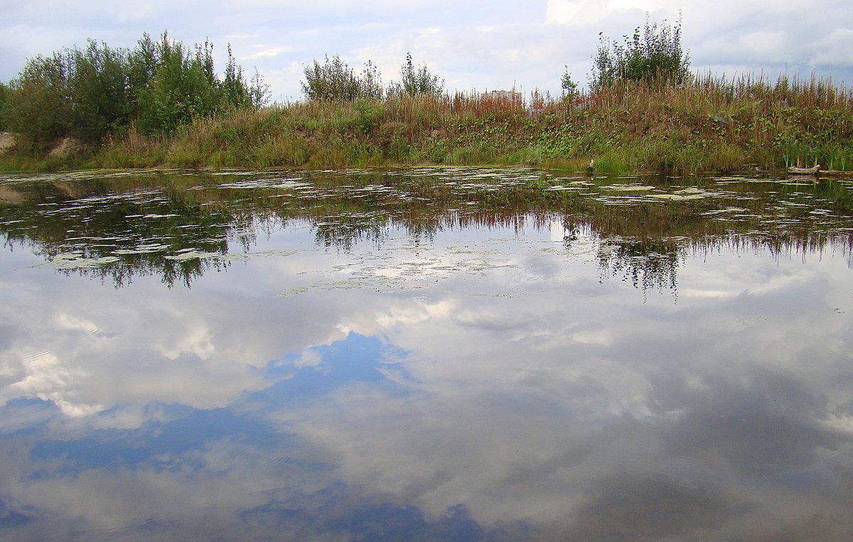 В реку смотрятся облака - Елена Перевозникова