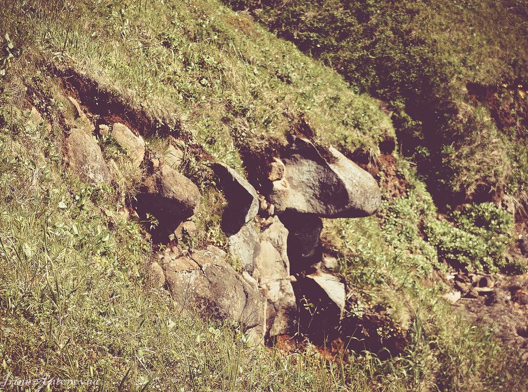 Каменный нос - Ирина Антоновна