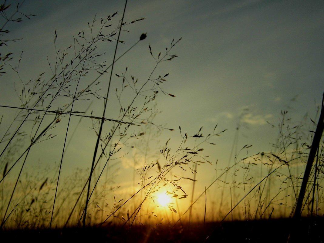 Осенний вечер - Ирина Останина