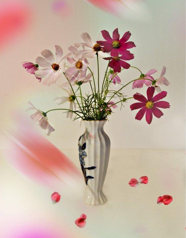 Лето в вазе - Клара