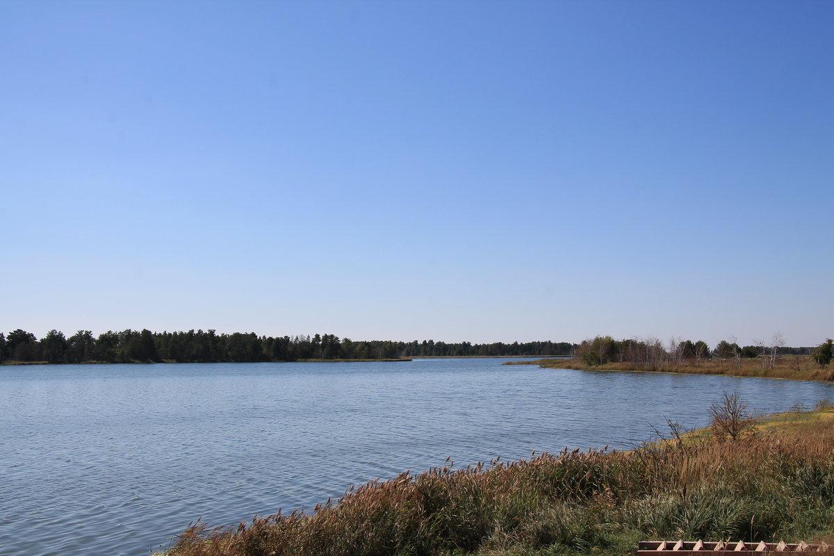 """Озеро """"Горькое"""" - Олег Афанасьевич Сергеев"""