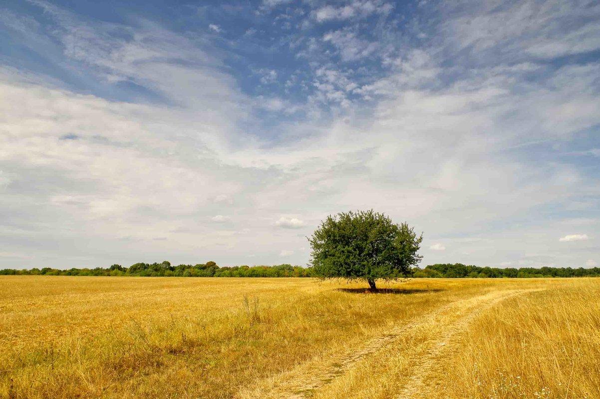 одиночество - юрий иванов