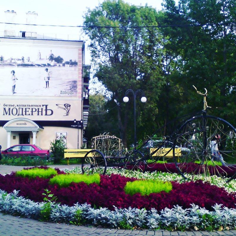 Кусочки красиво уходящего лета в наших Подмосковных Люберцах! - Ольга Кривых