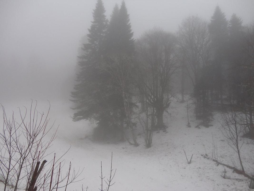 Зима в горах - Надежда