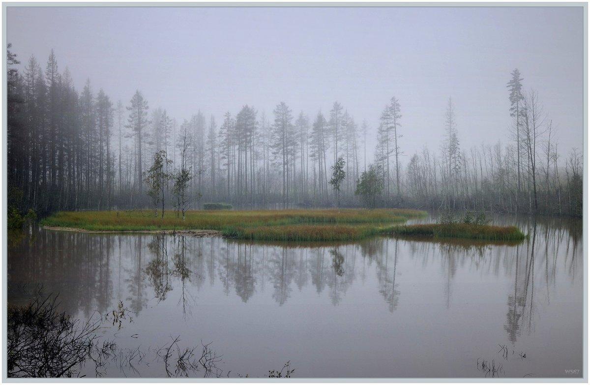 Туманным утром - Vadim WadimS67