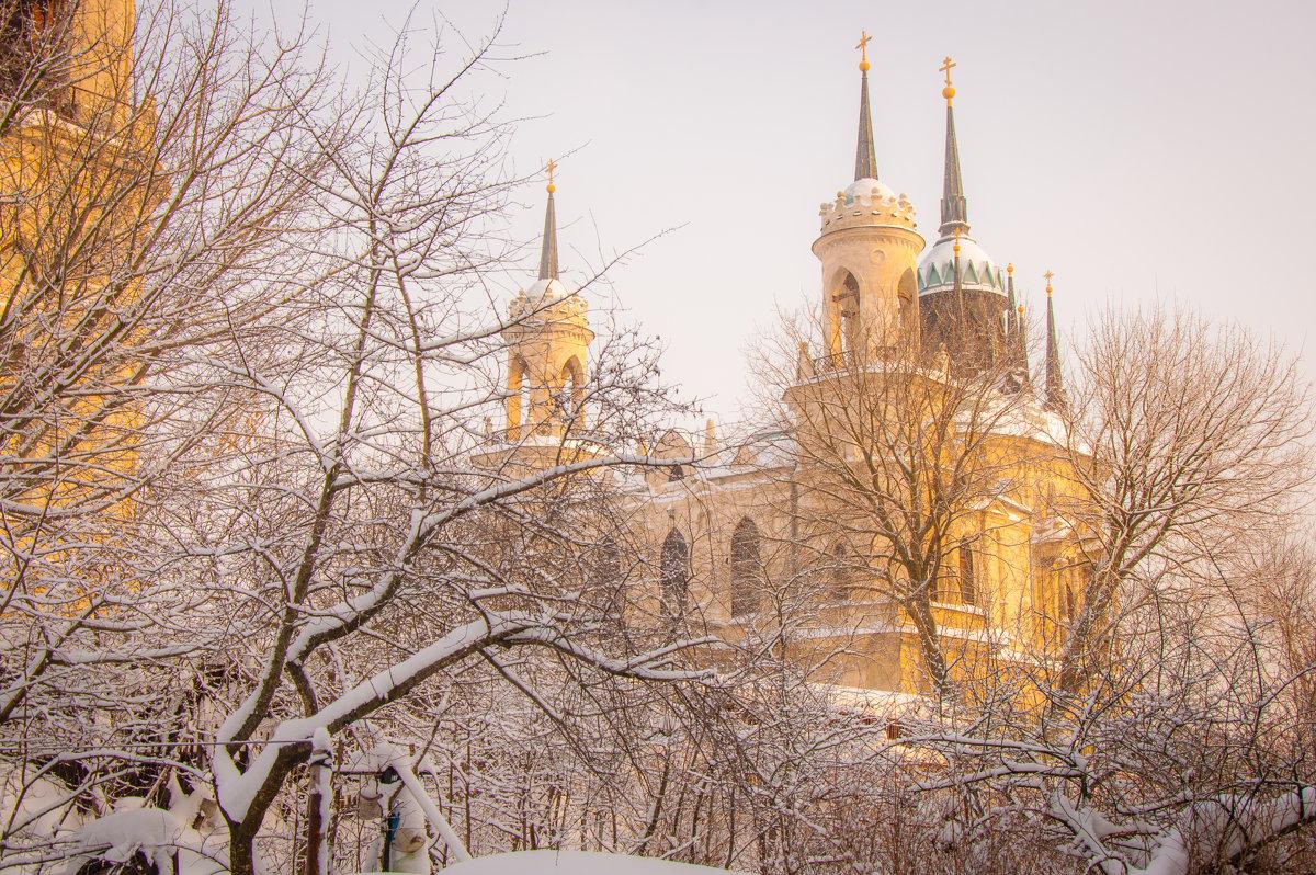 Зима в Быково - Alexander Petrukhin