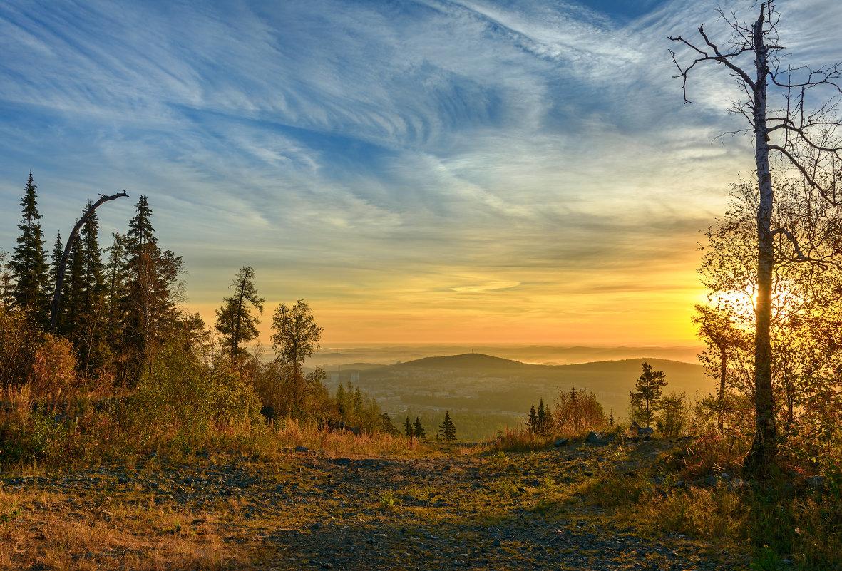 Утренние тени - vladimir
