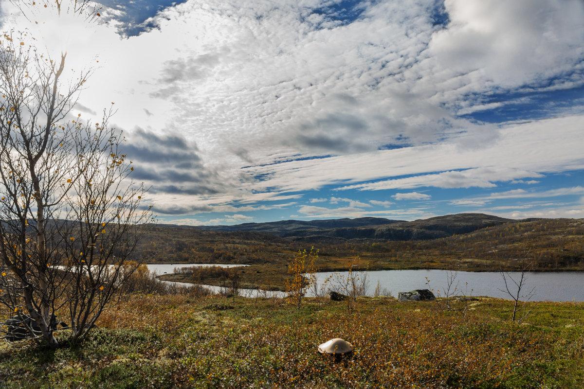Осень - Oleg Akulinushkin