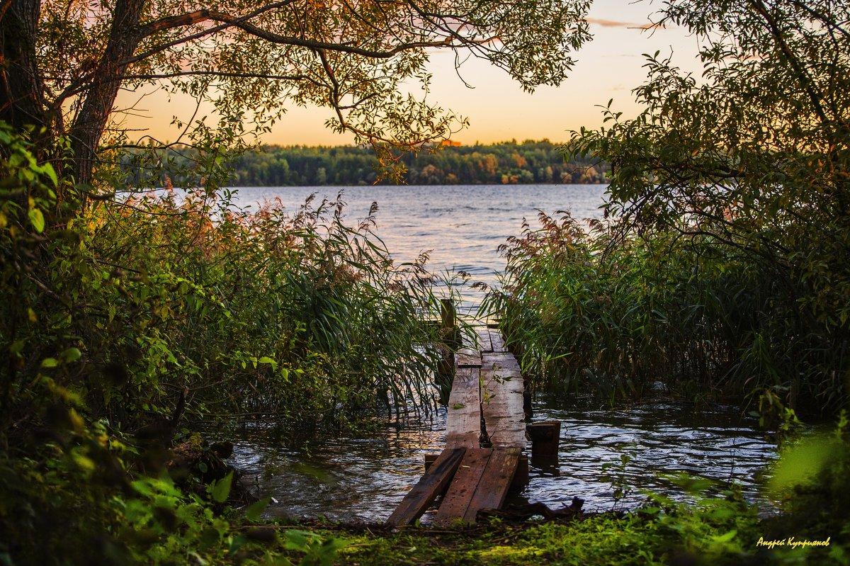 Осенние краски - Андрей Куприянов