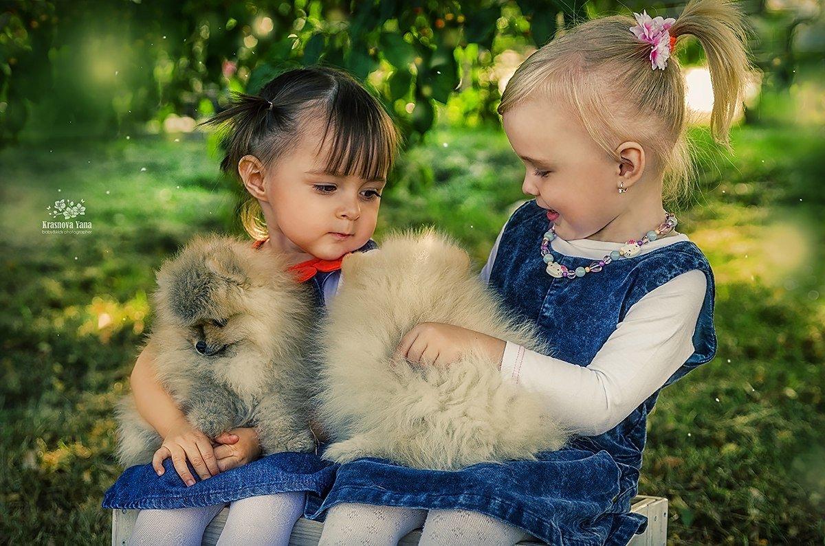 Фотосессия со щенками - Яна Краснова