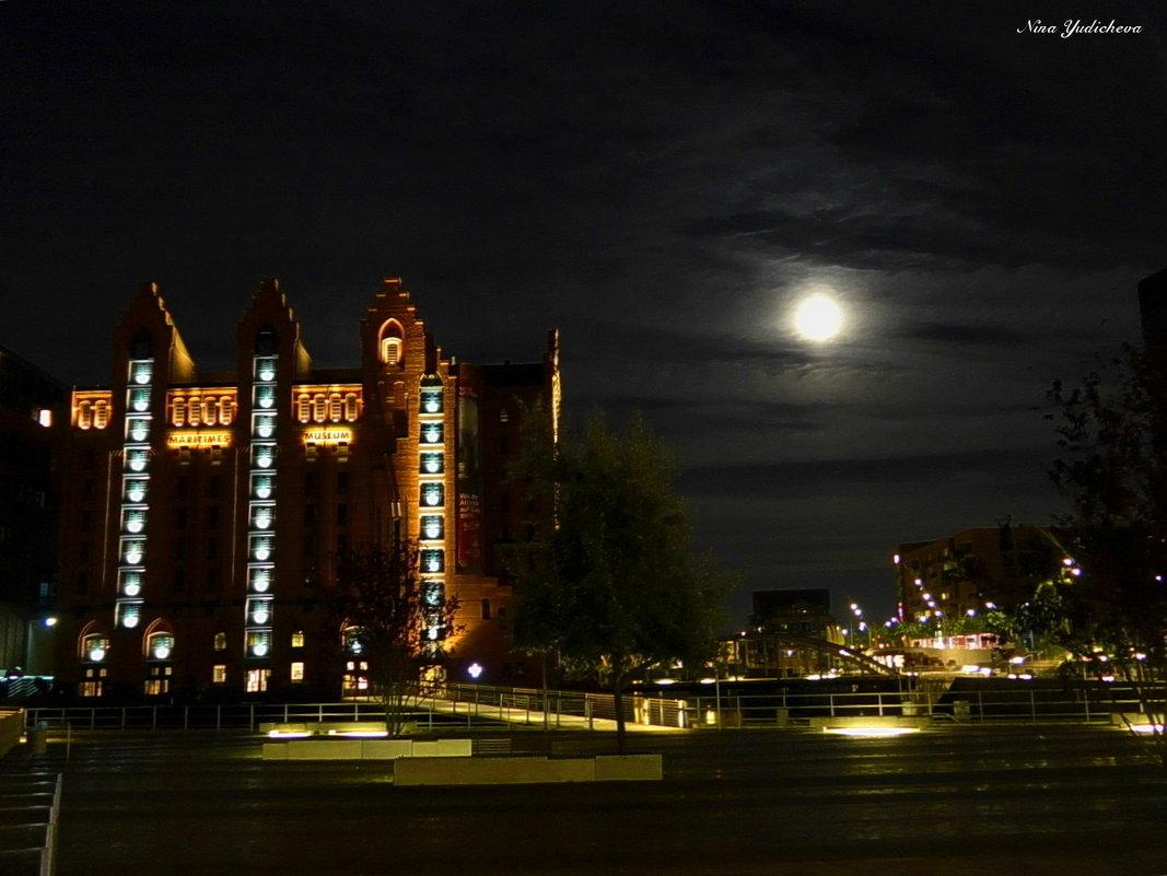 Очарование ночного Гамбурга (серия) - Nina Yudicheva