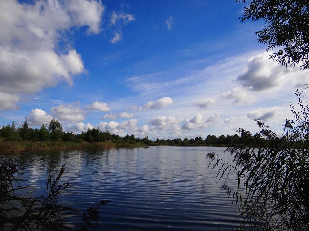 Озеро.. - Антонина Гугаева