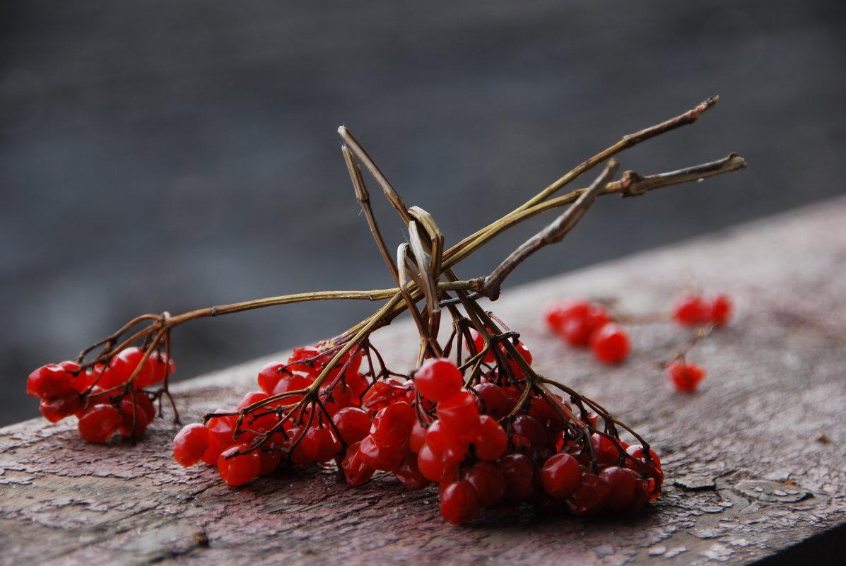 Осенние мотивы - Татьяна Аистова
