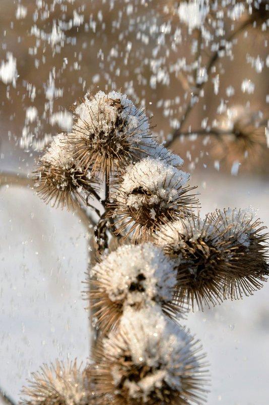 снежок - Юрий Ефимов