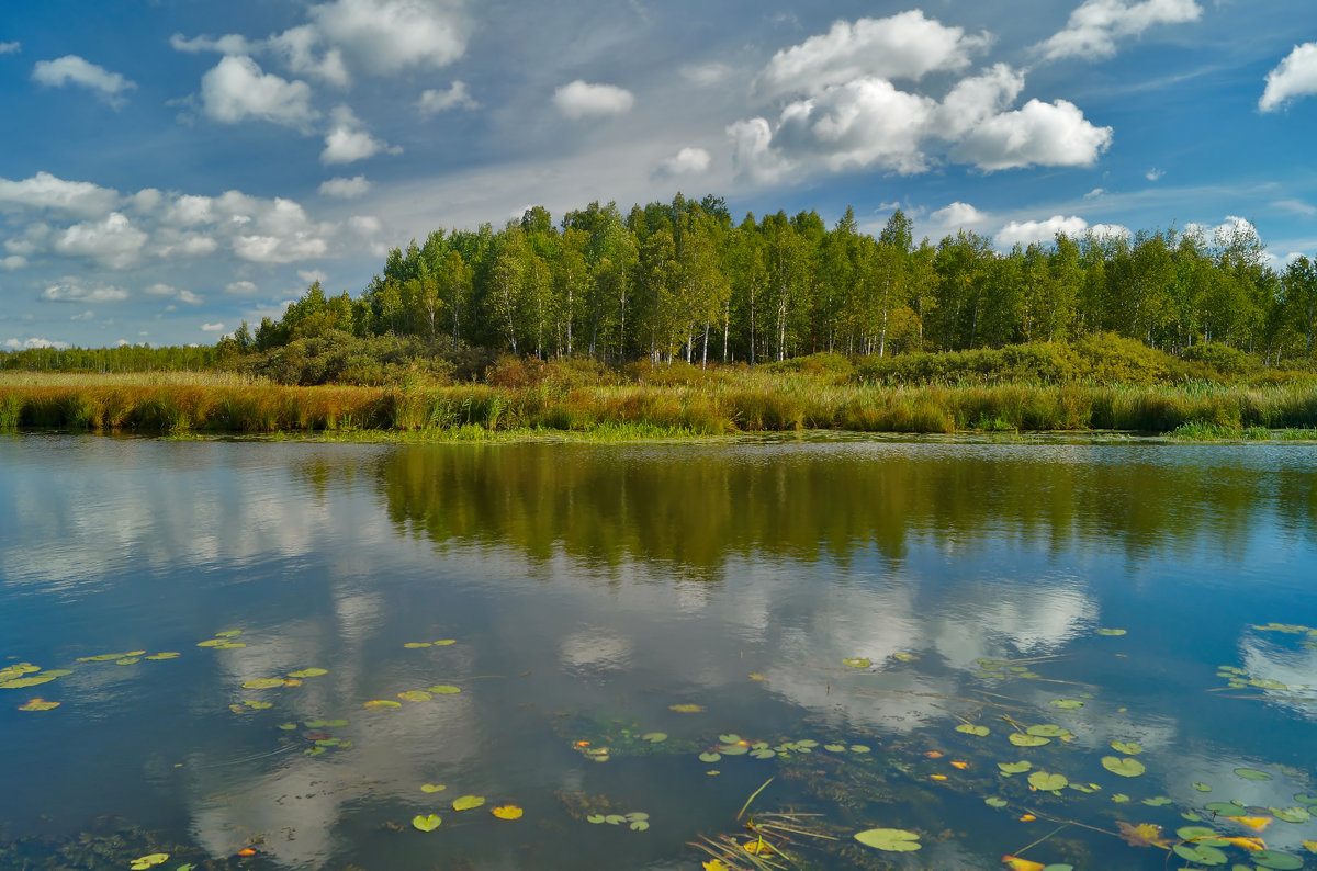 Река Исеть - Александр Смирнов