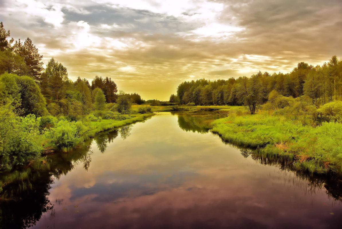 Не то,что мните вы,природа не слепок,не бездушный лик-в ней есть душа,в ней есть свобода,в ней есть - Алла Кочергина