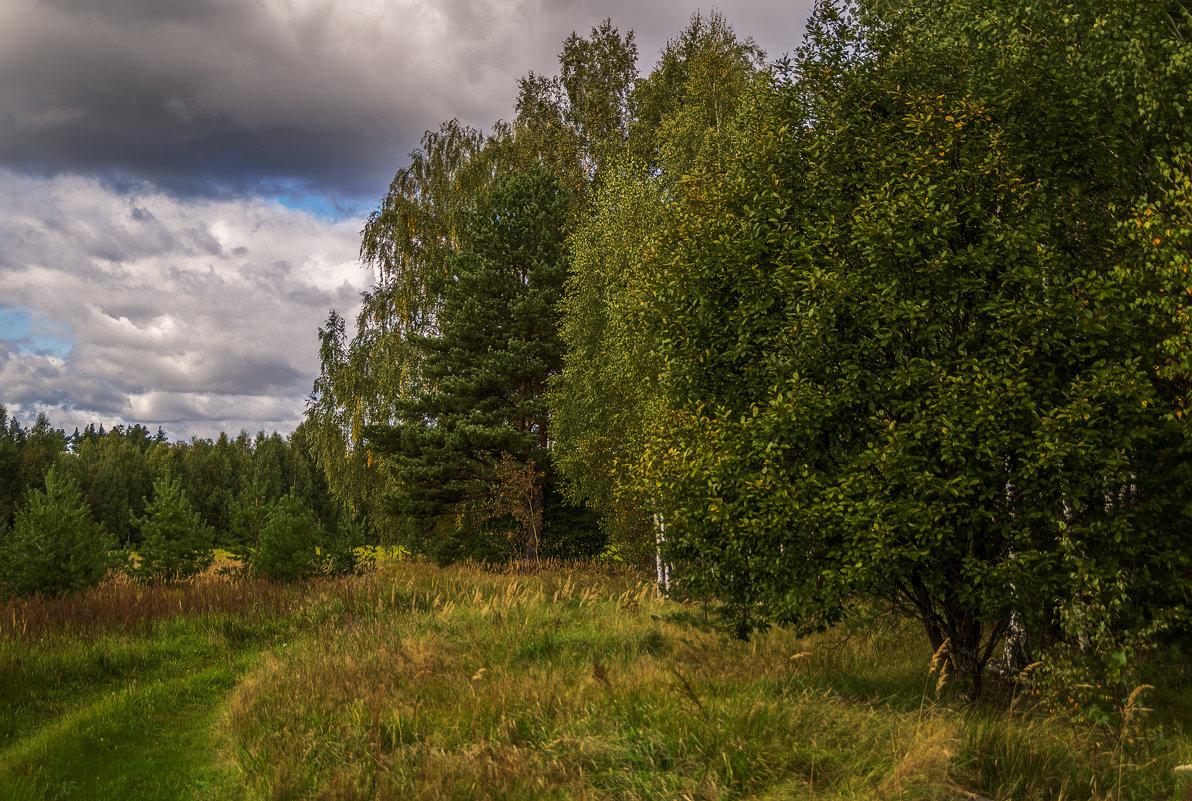 Вот и осень - Андрей Дворников