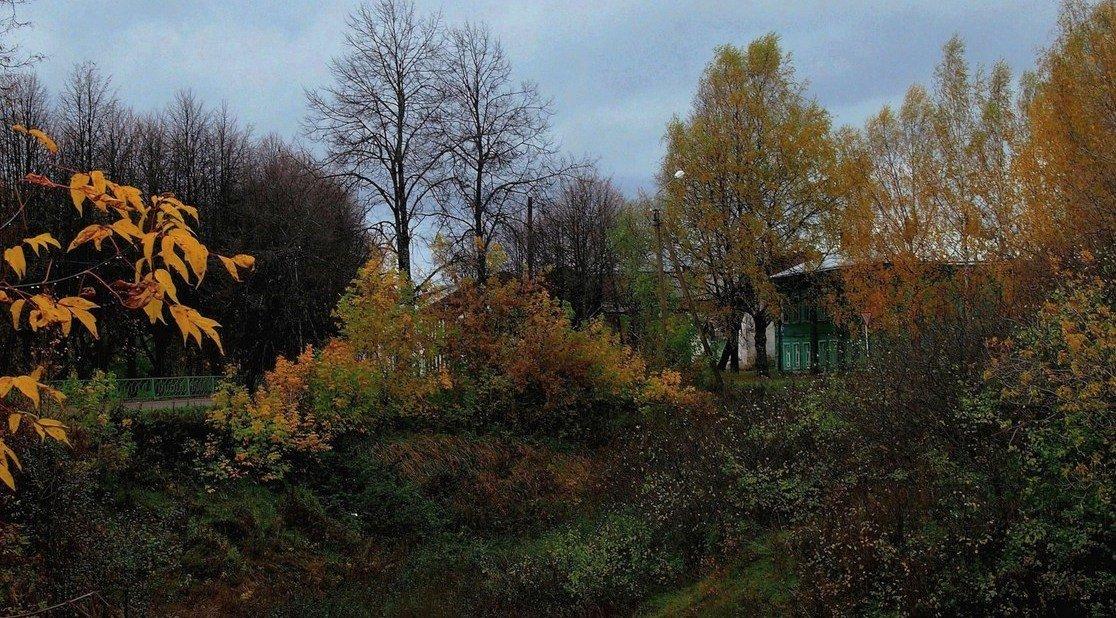 Ненастный день - Надежда Бахолдина
