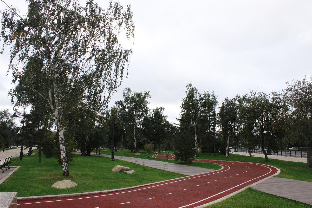 Велодорожка - раиса Орловская