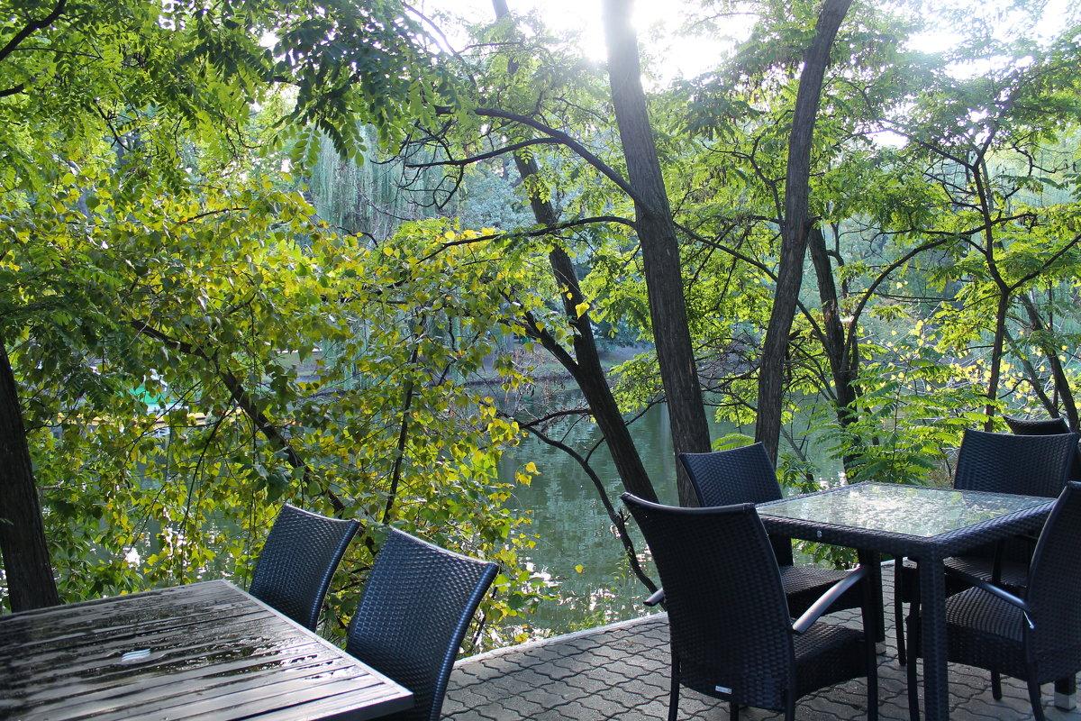 Кафешка в парке - Лариса Коломиец