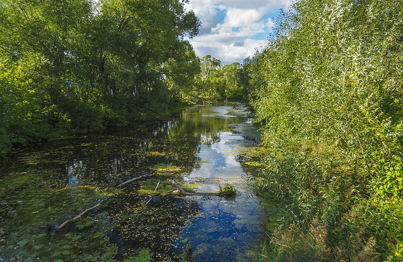 Река Колокша - Сергей Цветков