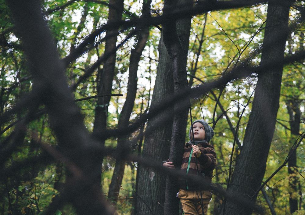 темный лес - Анна Вязьмина-Кирилюк