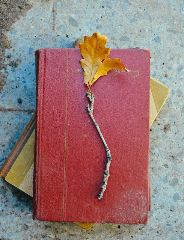 Книги для чтения на природе - Света Кондрашова