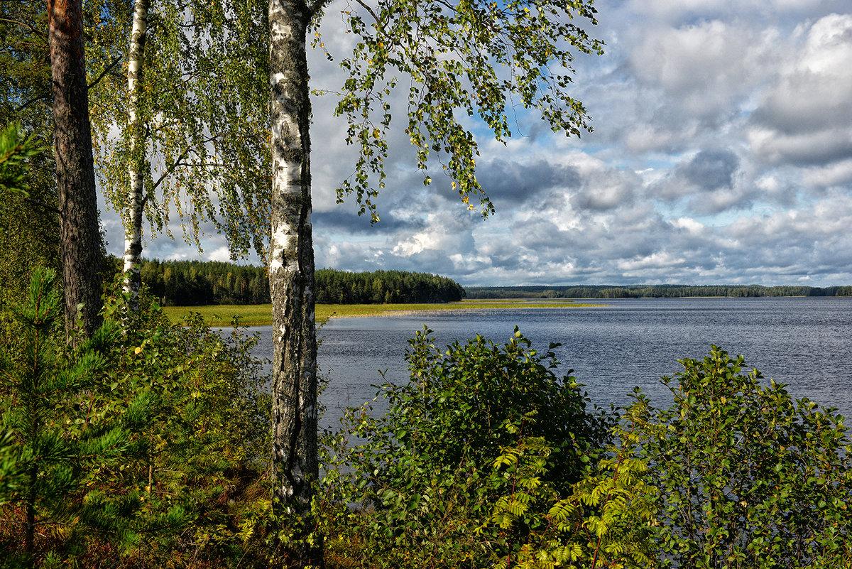 Уголок природы финской - Valeriy(Валерий) Сергиенко