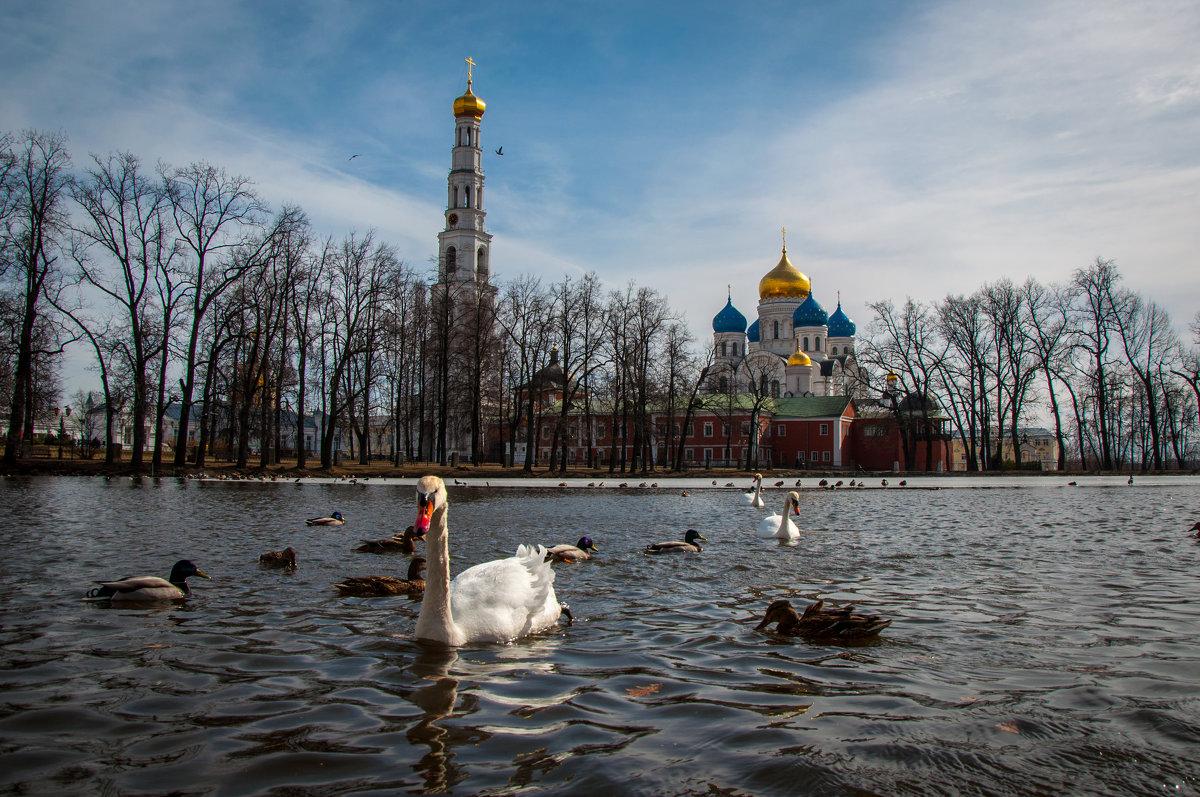Николо-Угрешский монастырь ранней весной - Alexander Petrukhin