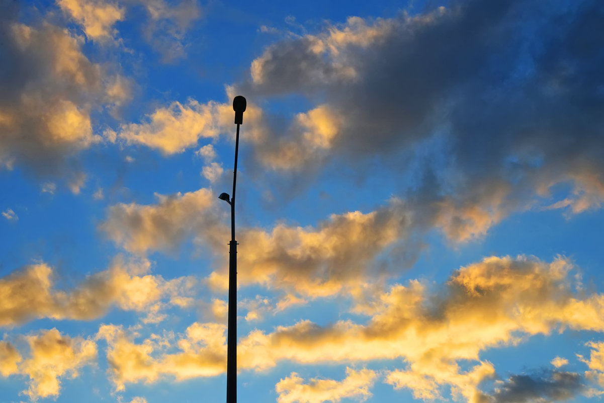 Небесные декорации, или В ожидании исполнения - Полина Потапова