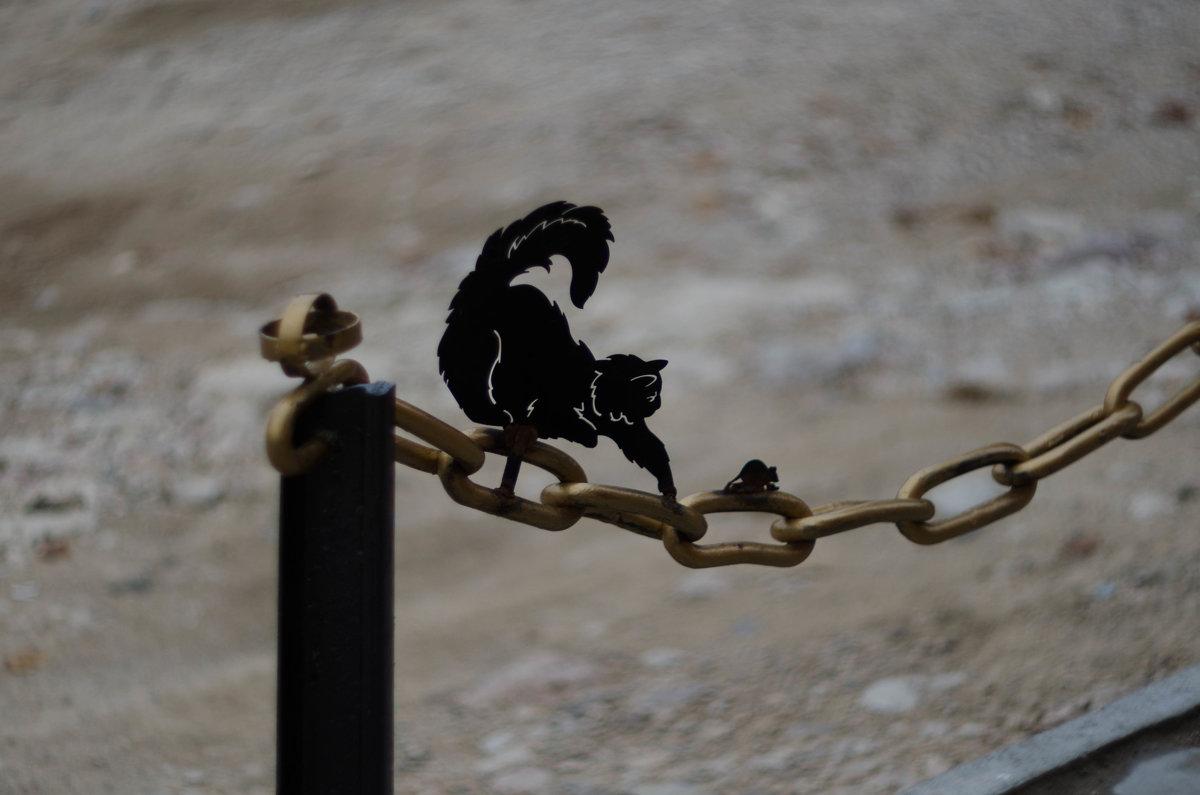 Кот который гуляет сам по себе... - Александр Светлый
