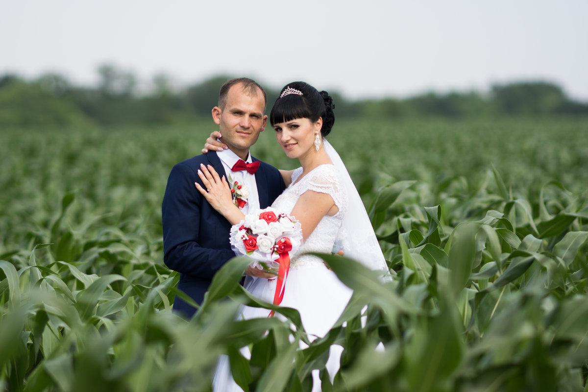 молдавская свадьба - Юрий Удвуд