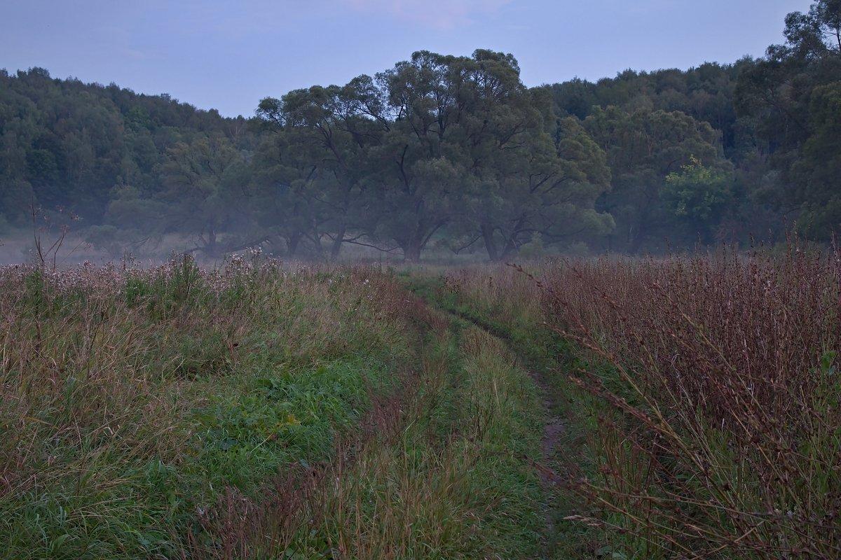 По дороге к туману - Константин