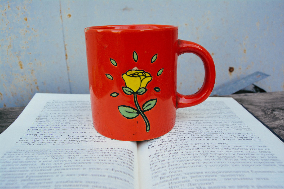 горячий чай на книге - Света Кондрашова