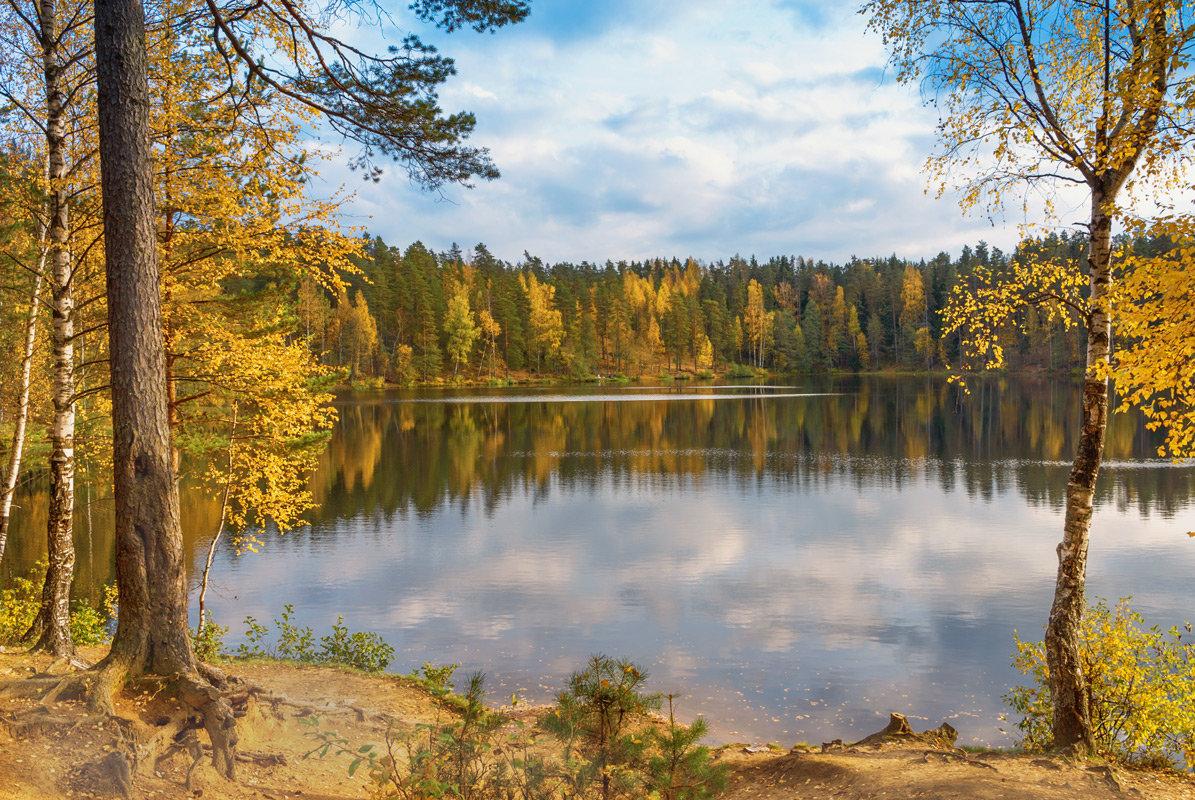 Осень на лесном озере 2 - Виталий