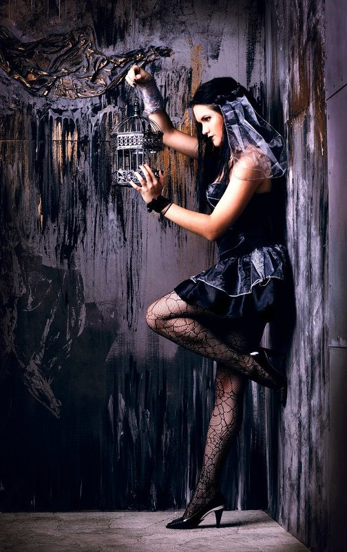 Клетка для птички - Alesia *
