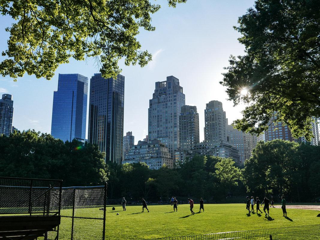 Central Park New York - Павел L