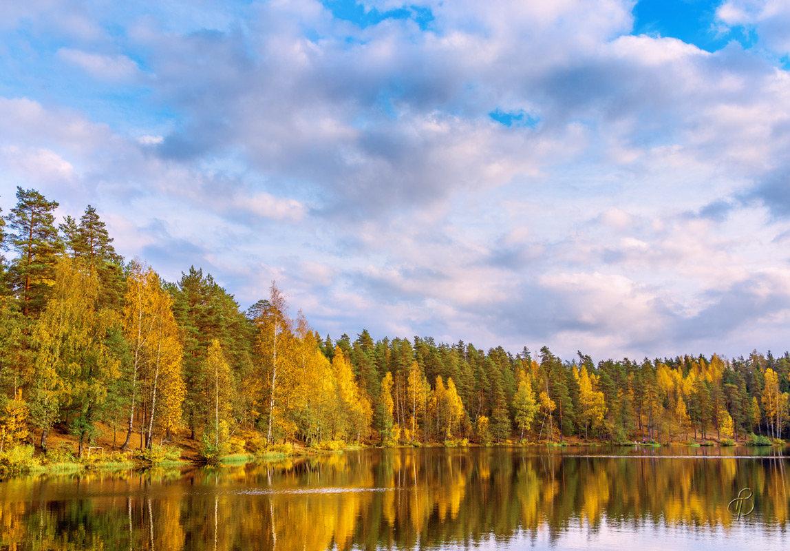 Осень на лесном озере 5 - Виталий
