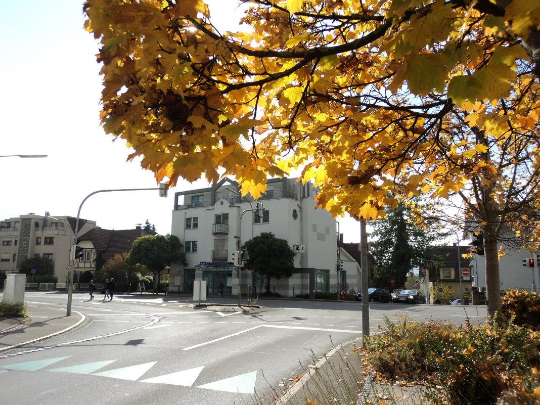осень в городе - kuta75 оля оля