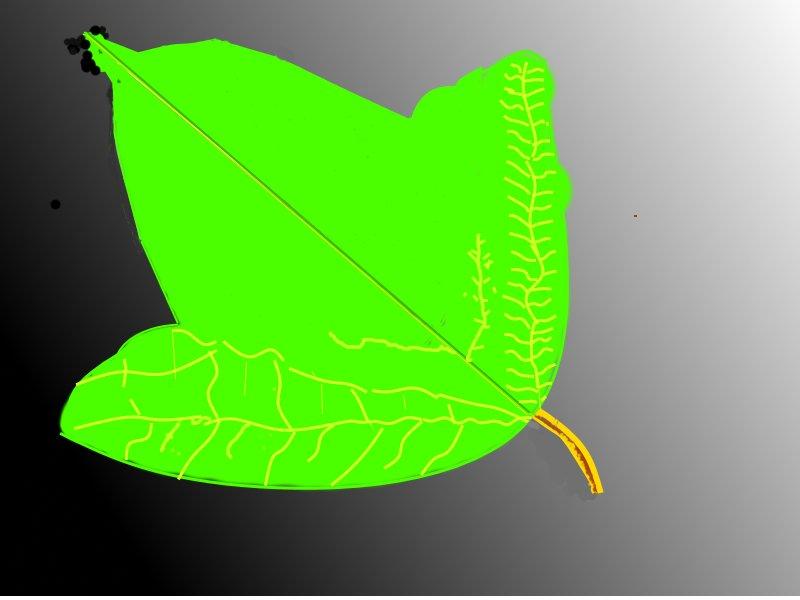 лист калины - Лебедев Виктгр